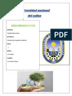 Análisis ambiental en el Perú-lazo sanchez mayra.docx
