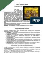Tajibo o Alcornoque amarillo.docx