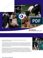 Practical Guide to Bovine Reproduction Tcm95-44851 2