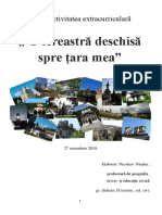o_fereastra_deschisa_spre_tare_mea.docx