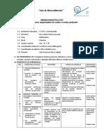 UNIDAD DIDÁCTICA 01 - MAT 5TO GRADO.docx