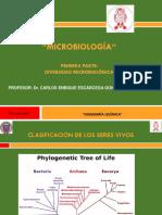 Diversidad microbiologica