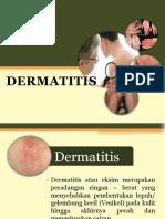 Penyuluhan kulit dermatitis.pptx