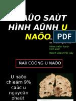 CT_UNAO