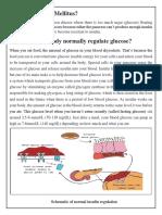 What is Diabetes Mellitus.pdf