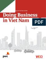 pwc-viet-dbg-2018.pdf