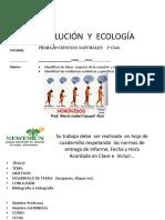 2 b Evo y Eco Newentun 2017 (2)
