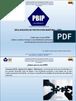 Que Es Una Declaracion de Proteccion Maritima - Codigo Pbip
