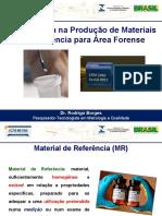 RodrigoBorges.pdf