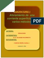 AFORO DE CORRIENTES.docx