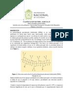 CLASIFICACIÓN DE PHPA.docx