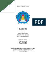 laporan identifikasi pinjal.docx