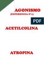 ANTAGONISMO.pptx