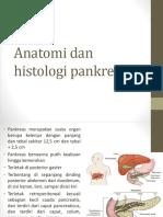Anatomi Dan Histologi Pankreas