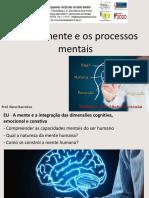 4- A Mente e Os Processos Mentais