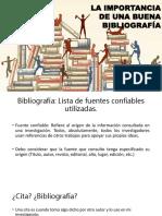 Formato APA.pptx