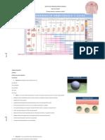 TP 1 embriología.docx