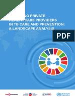 PPMLandscapeAnalysis.pdf