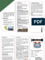 TRIPTICO DE LAS TRES REGIONES.docx