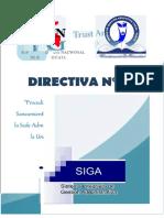 DIRECTIVA 01-2017 PATRIMONIO - OFICIAL.docx