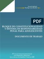 Bloque_constitucionalidad y Sis  Responsab Adolescentes - copia.pdf