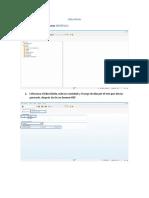 Manual Para Generación de Libro Diario SAP