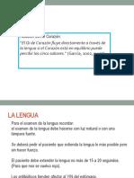 191 LENGUA pdf.ppt
