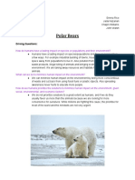 ecology project - polar bears