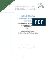 FINAL OFICIAL MONO.docx