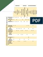 matriz de factores y acciones.docx