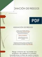 ASIGNACIÓN DE RIESGOS - cesar monetenrgo.pdf
