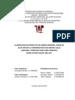 Proyecto Servicio Final Para Imprimir