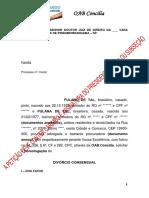 7 - MODELO INICIAL - DIVORCIO.docx