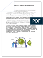 ENERGIA HIDRAULICA A TRAVES DE LA TURBINA PELTON.docx