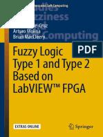 FUZZY labview.pdf