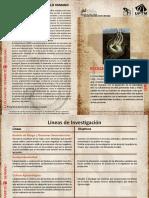Ecologia Del Desarrollo Humano