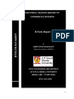 Ashwani report.docx