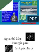 PDF AGUA DEL MAR ENERGIA PARA LA AGRICULTURA - LUIS SOTO ÑECCO.pdf