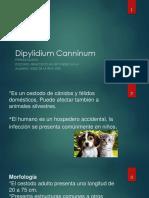 Thomas Quimica Medicinal(1)