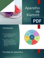 PWP_FINAL_ORTO (1).pptx