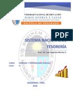 Sistema Nacional de Tesoreria.docx