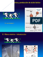 Prod acido lactico Lucio.ppt