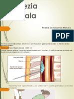 anestezia epidurala2