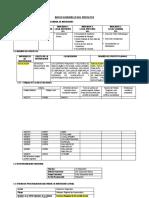 DATOS GENERALES DEL PROYECTO.docx