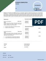 FORMATO DE CV SIN EDITAR.docx