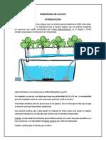 hidroponia DE CULTIVOS.docx