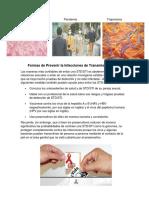 NeisseriaPandemia Treponema Formas de Prevenir la Infecciones de Transmisión Sexual.docx