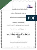 Ensayo sobre indicadores ambientales.docx