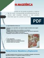 reginmasetricaa-140301210218-phpapp01