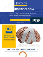 Neuropsicologia-3